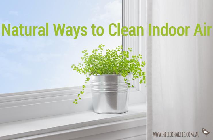 natural ways to clean indoor air